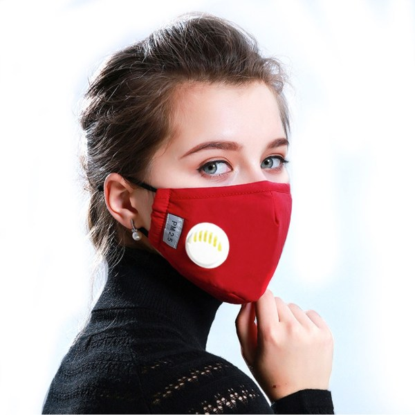 Reusable Face Mask Antibacterial Virus Protection Mask Model Primary