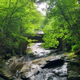 Wildcat Falls Hike