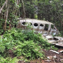 Hike to Smoky Mountains Plane Crash via Waterrock Knob