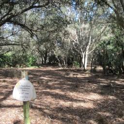 Florida Trail, Three Lakes WMA
