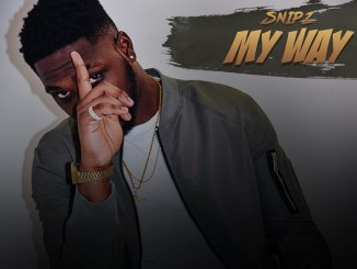 SNiPZ - My Way