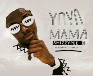 Shizzypee - Yo-Yo Mama (Prod. By TeekayWitty)