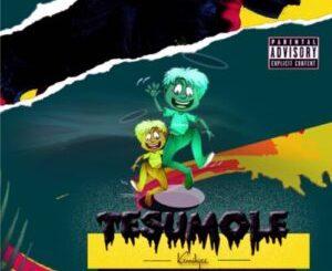 DOWNLOAD MP3: Kennihgee Tesumole | 360NaijaHits