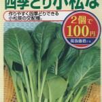 100均の種で『四季どり小松な(かおる小松菜)』の育て方・栽培方法