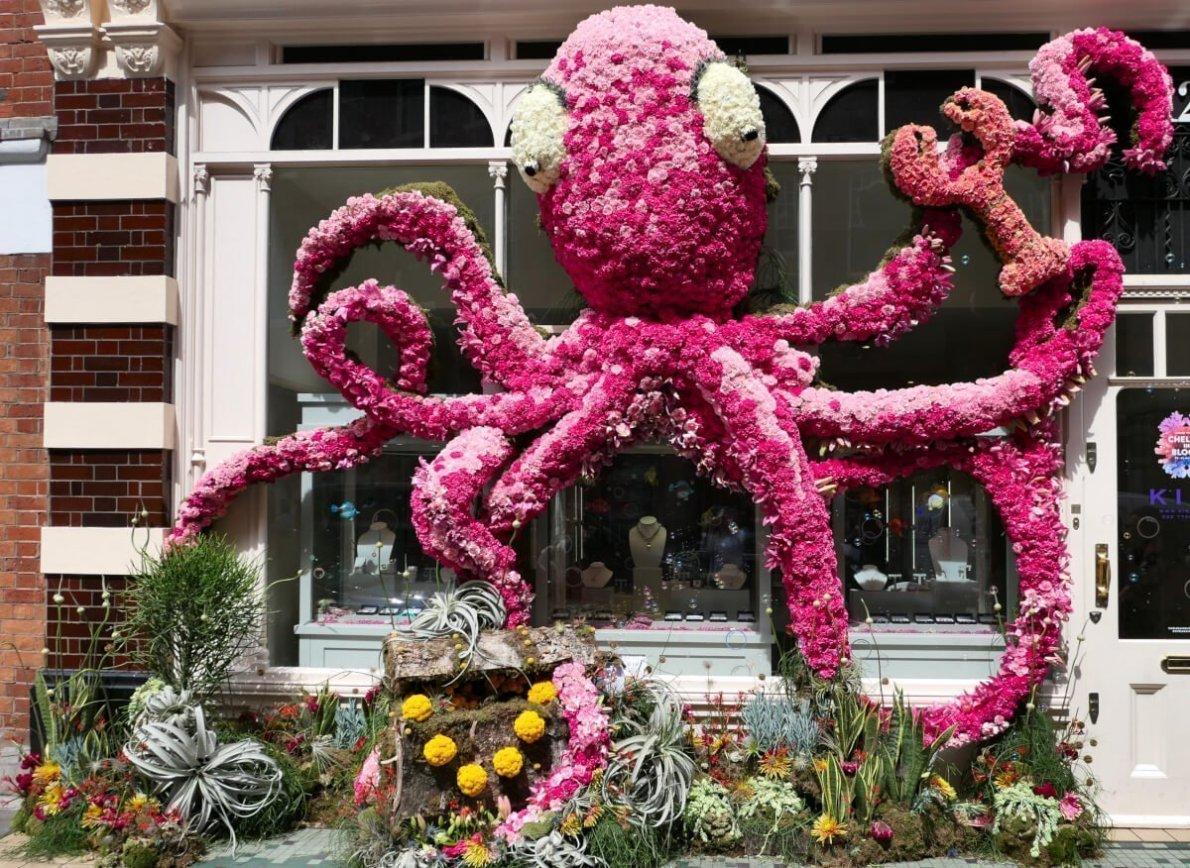 Kiki Mcdonough, Chelsea in Bloom, London, England