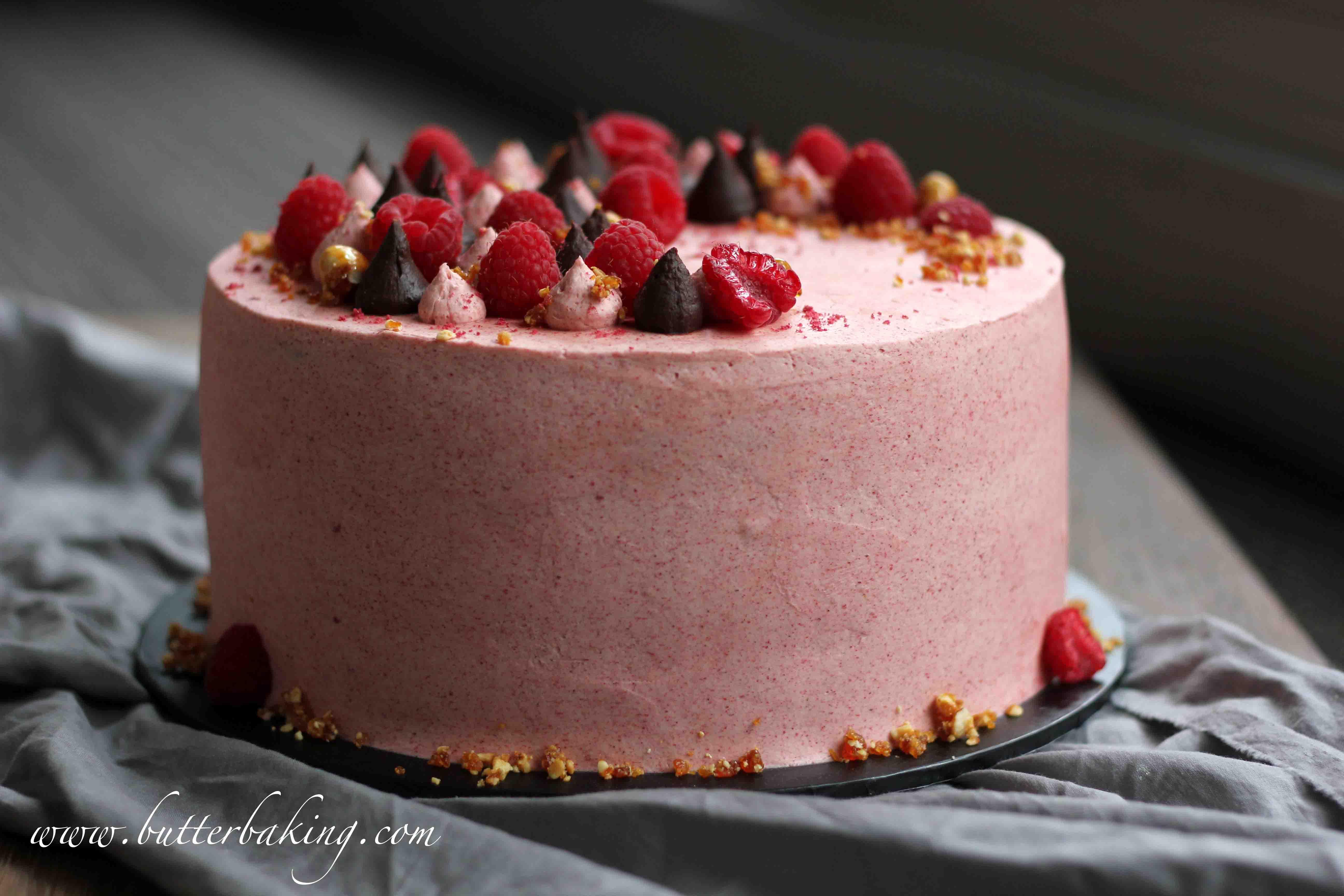Chocolate, Raspberry and Hazelnut Layer Cake – Butter Baking