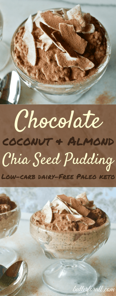 Chocolate Coconut And Almond Chia Seed Pudding