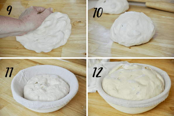 3Cheesy Sourdough Pizza Bread Steps 9-12. Showing gentle kneading, a tight dough ball, dough in proofing basket, and doubled dough ready for baking.