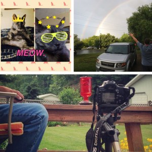Poppy made a rad collage of Marsha T. Cat in June. We also saw a double rainbow, and I stalked a hummingbird with my dad.