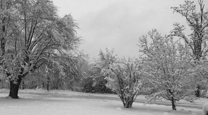 A poem about our surprise snowstorm
