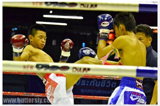 front kick muay thai