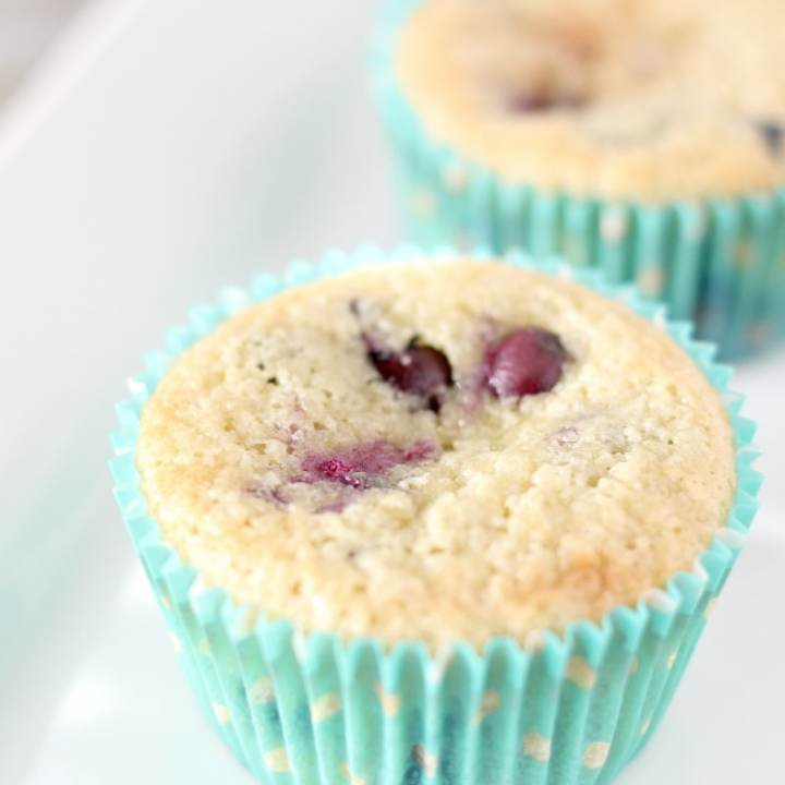 Keto Blueberry Muffins