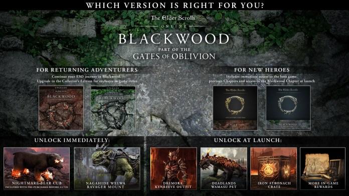 New Elder Scrolls Online DLC Takes Players Back To Oblivion