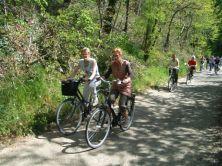 fietstocht en rozen maken 039