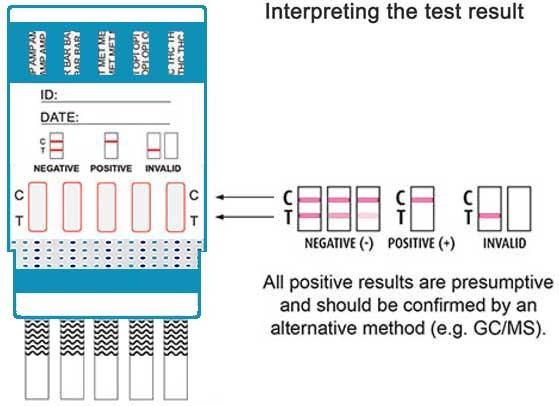 10 panel dip drug testing kit