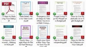 debt-reduction-plr