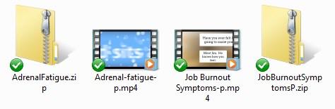 BurnoutMainVideos