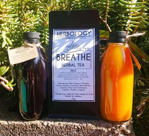 This Herbology's Family Natural Immuno package