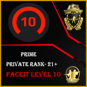 Faceit Level 10 Account