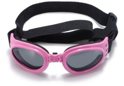 Dog's Sunglasses