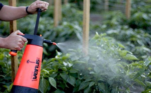 Garden Sprayers
