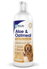 Best Hypoallergenic Soaps and Shampoos For Dogs Review In 2020- A Step By Step Guide 6