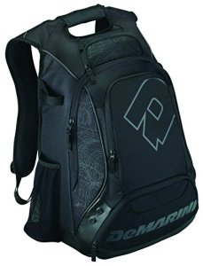 Top 10 Best Baseball Bags Review In 2021 – A Step By Step Guide 3