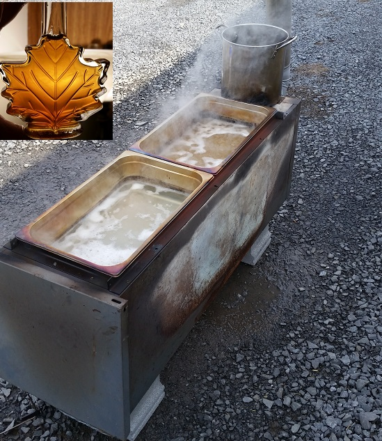 How to make your own wood burning Maple Syrup Evaporator