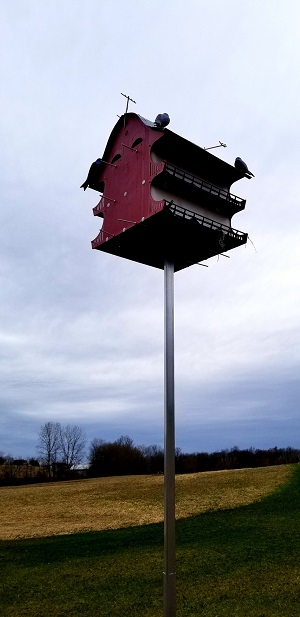 Purple Martin House kit installation