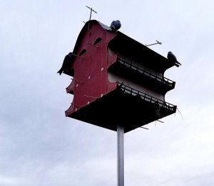 Best Purple Martin House…Complete kit with pole!