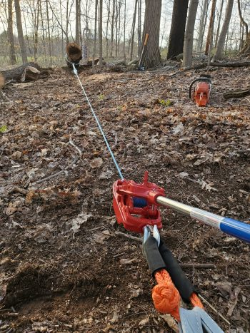 Heavy Duty Ratchet Puller attached to a tree dragging a log
