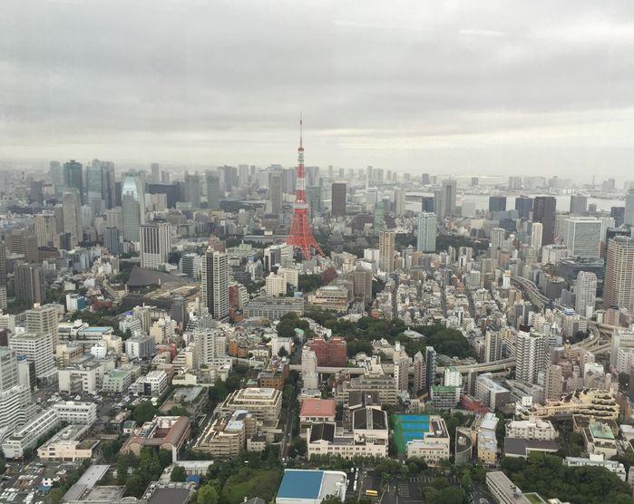 巴斯的書中黃金屋 下午東京鐵塔照