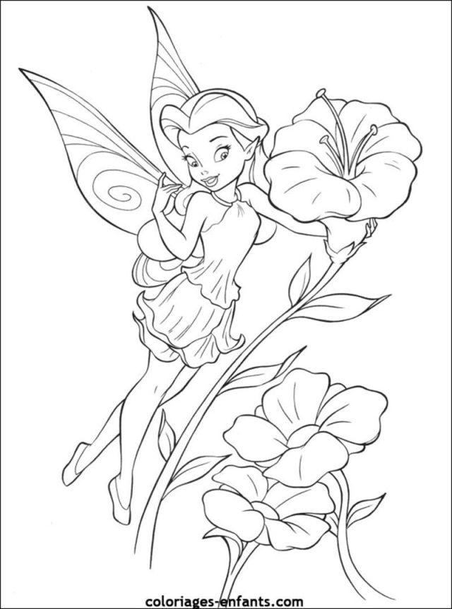 dessin à colorier fée des jardins