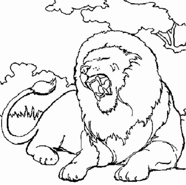 dessin à colorier roi lion nala