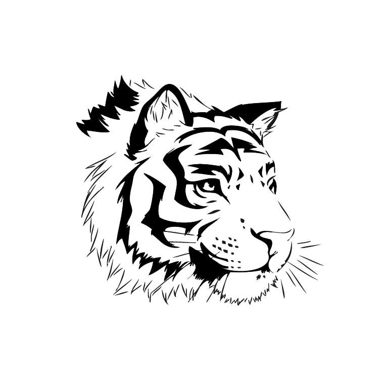 Coloriage Tigre Du Bengale Blanc Coloriages Imprimer Free Coloring