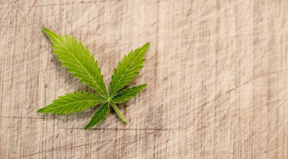cannabis fitness