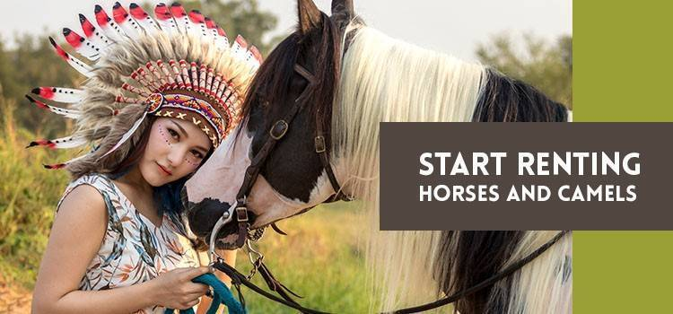 Start Renting Horses and Camels