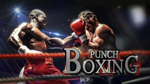 punch boxing 3d - best android fighting game
