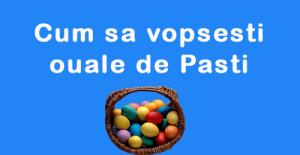 vopsire-oua-Paste