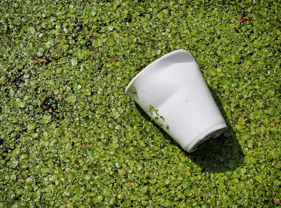 Polluted water sources are the major cause for ban of plastics