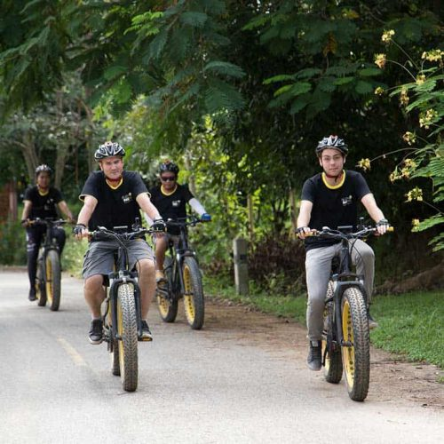 cool shadow | Buzzy Bee Bike, Chiang Mai, Thailand