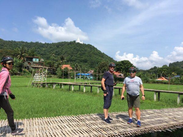 walking on rice | Buzzy Bee Bike, Chiang Mai, Thailand