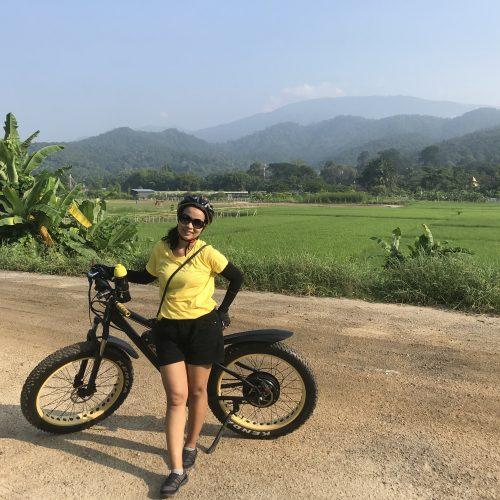 matching colors | Buzzy Bee Bike, Chiang Mai, Thailand