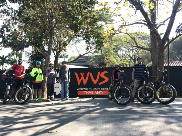 stop at WVS Care for Dogs | Buzzy Bee Bike, Chiang Mai, Thailand
