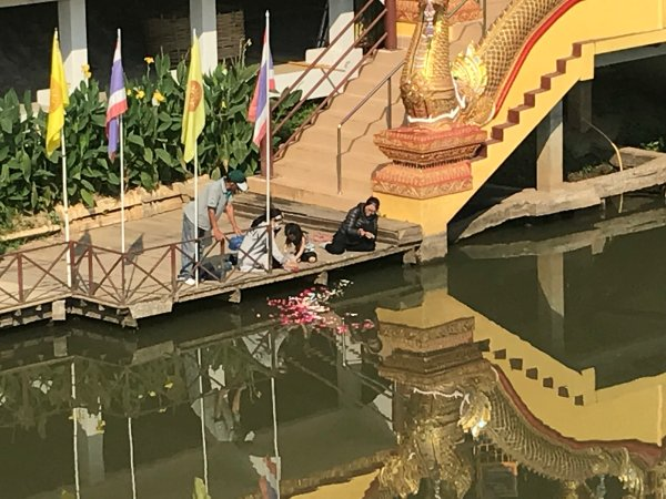 bringing ashes to Ping River | Buzzy Bee Bike, Chiang Mai, Thailand