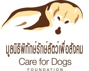 care for dogs foundation | Buzzy Bee Bike, Chiang Mai, Thailand