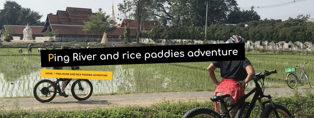 Ping River and rice paddies adventure | Buzzy Bee Bike, Chiang Mai, Thailand