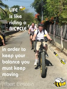 celebrity bicycle quotes - Albert Einstein | Buzzy Bee Bike, Chiang Mai, Thailand