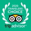 TripAdvisor Travelers' Choice 2020 | Buzzy Bee Bike, Chiang Mai, Thailand