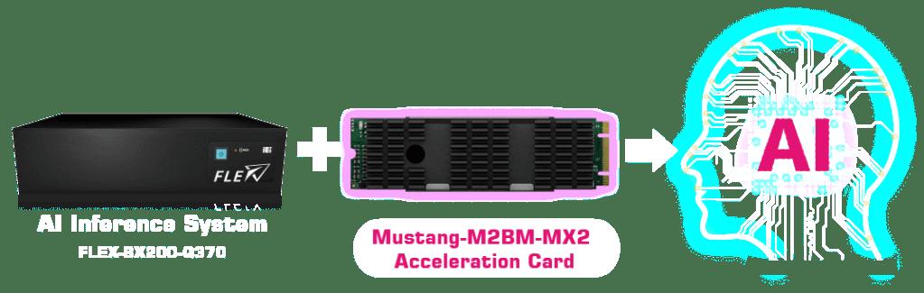 combo M2BM MX2 1